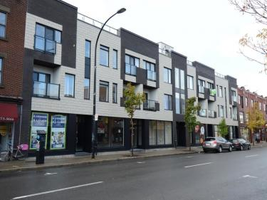 Les Terrasses 7250 St-Hubert - in immediate occupancy