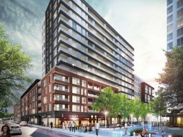 21e arrondissement Phase 2 - Bank | Condos dans le Vieux-Montr�al