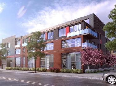MIO Condominiums - Condos neufs dans la Petite-Italie avec garage
