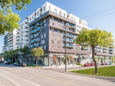 Quartier 55 - condos-services - Condos neufs dans Rosemont