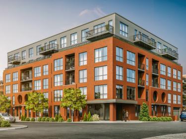 Wilcox Appartements - Condos et appartements  à louer dans Griffintown